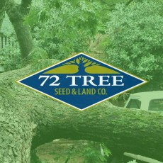 tree service alpharetta